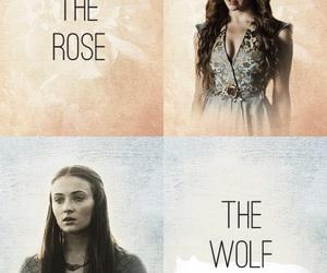 game of thrones, sansa stark, and margaery tyrell image