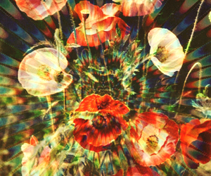 flowers and trippy image
