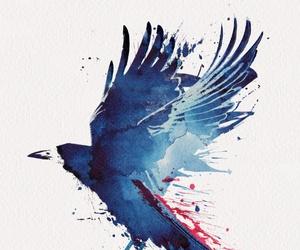 art, bird, and crow image