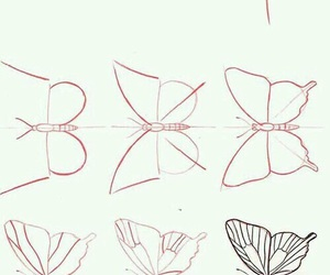 butterfly and draw image