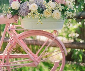 flowers, pink, and bike image