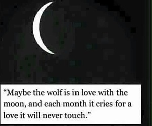 moon, wolf, and love image