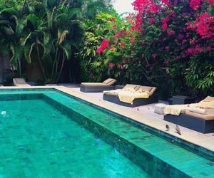 pool, flowers, and luxury image