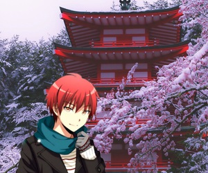 cherry blossoms, snow, and wallpaper image