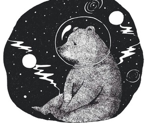 bear, black and white, and draw image