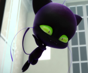plagg, Chat Noir, and miraculous image