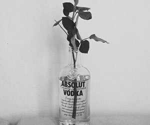 vodka, rose, and flowers image