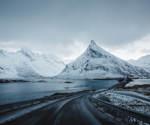 indie, nature, and winter image