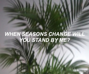 quote, plants, and aesthetic image