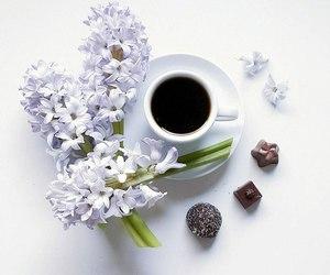 beautiful, coffee, and flowers image
