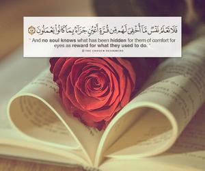 arabic, islam, and quran image