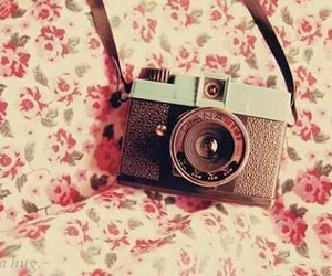 camera, flowers, and memories image
