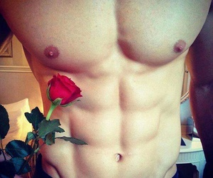 boy, rose, and abs image