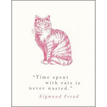 beautiful, cat, and kitty image