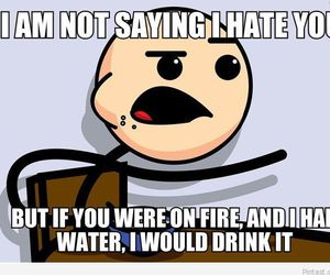 funny, hate, and fire image