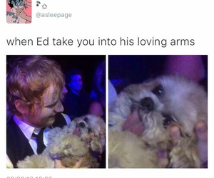 ed sheeran, thinking out loud, and funny image