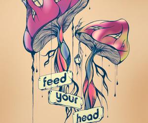 mushroom, head, and drugs image