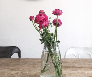 pink, pivoine, and roses image