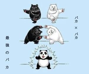 panda, bear, and funny image