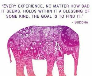 quotes, Buddha, and elephant image