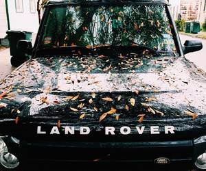 car, leaves, and land rover image