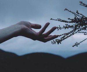 photography, grunge, and hand image