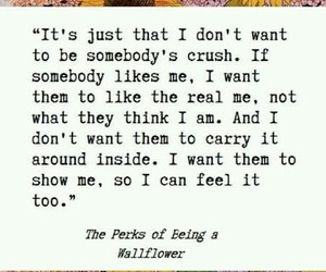 quote and the perks of being a wallflower image