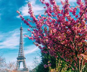 amazing, away, and eiffel tower image