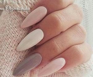 nail polish, pink, and nailart image