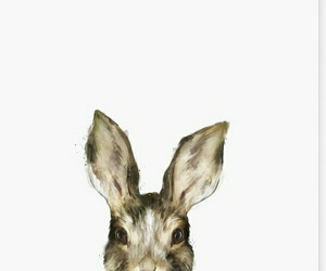 cute, bunny, and hare image
