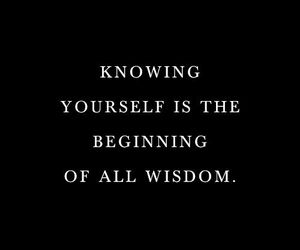 quote and wisdom image