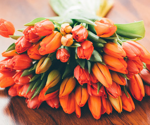 flowers, food, and hair image