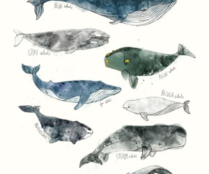 art, blue whale, and drawing image