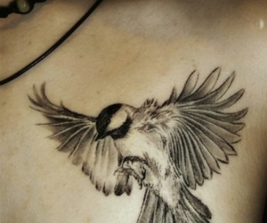 awesome, bird, and tattoo image