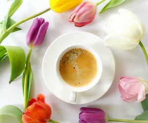 coffee break, cup, and flowers image