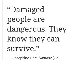 dangerous, quote, and survive image