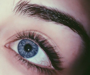eyes, eyebrows, and grunge image