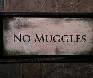harry potter, muggles, and no muggles image