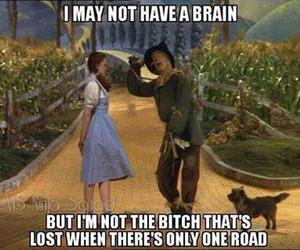 brain, dorothy, and lol image