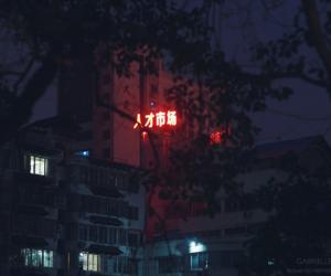 dark, neon, and asia image