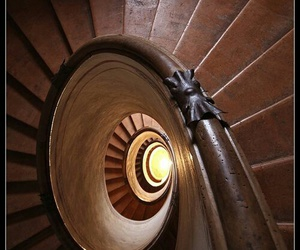 color photography, dark wood, and spiral image