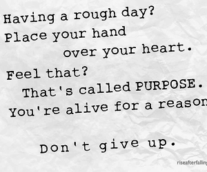 quotes, heart, and purpose image