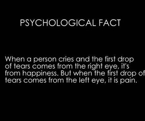 facts, cry, and quotes image