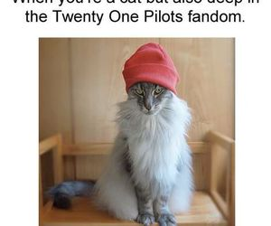 twenty one pilots image