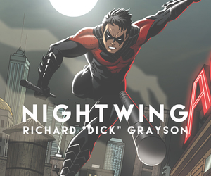 nightwing and richar dick grayson image