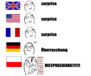 funny, polish, and german image