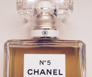 beauty, chanel, and coco image