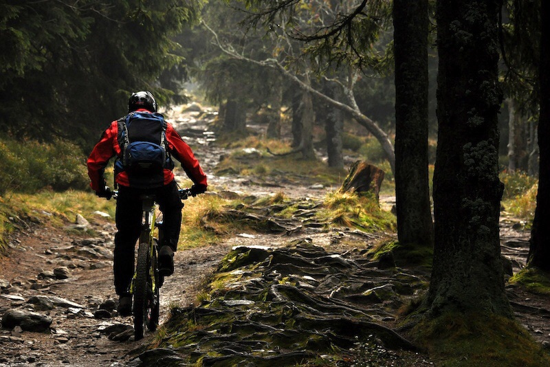 Action, sports, and enduro image