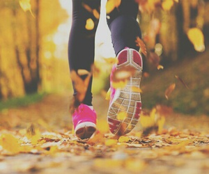 run, autumn, and running image