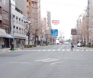 japan, Nippon, and tokyo image